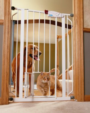 Carlson Extra-Tall Walk-Thru Gate with Pet Door