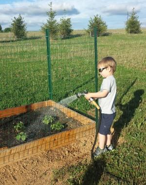 Watering the garden.